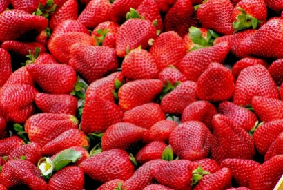 Everything you need to know about strawberry